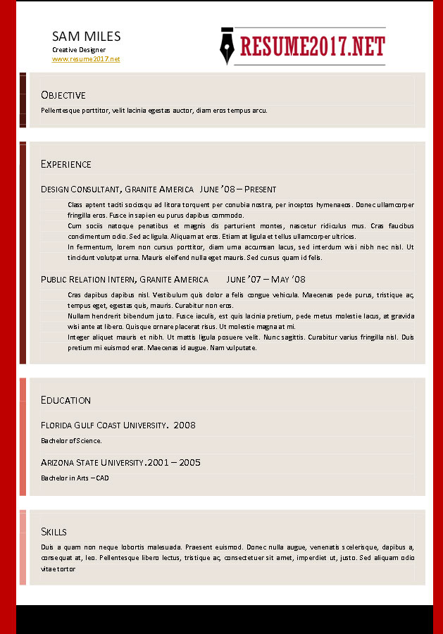resume format 2017 - Combination Resume Template