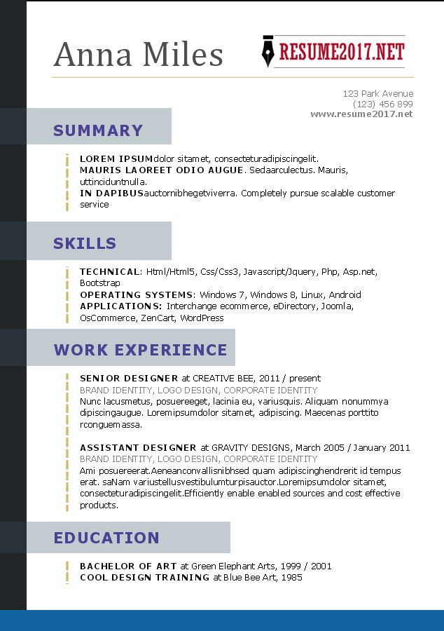 resume format 2017 - 16 free to download word templates - Resume Examples Word Format