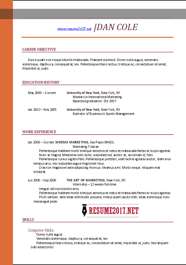 Perfect Chronological Resume Template 2017