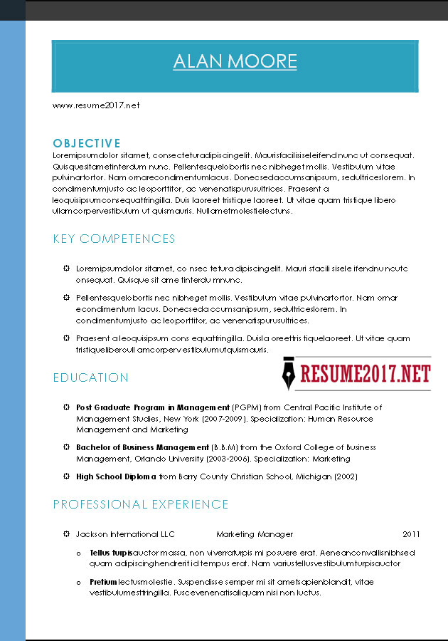 Combination resume format 2017 hybrid resume format 2017 download combination altavistaventures Gallery