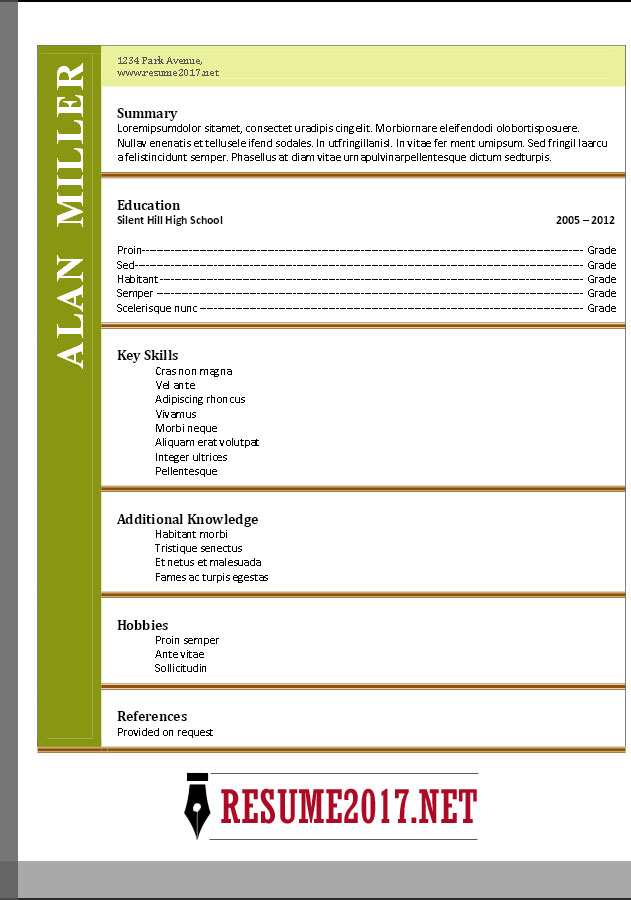 download functional resume format 2017 free - Functional Resume Format Example