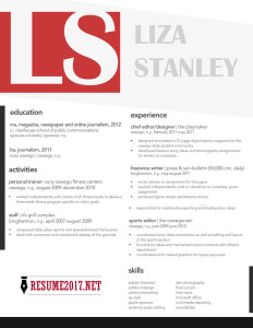 Creative resume layout 2017
