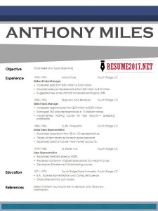 Creative resume example 2017